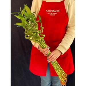 Купить бамбук поштучно с доставкой в Комсомольске-на-Амуре