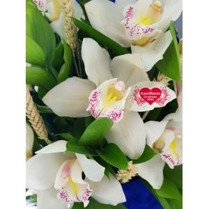 Купить коробку с королевской орхидеей в Комсомольске-на-Амуре