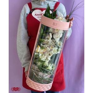 Купить орхидею в коробке с доставкой в Комсомольске-на-Амуре