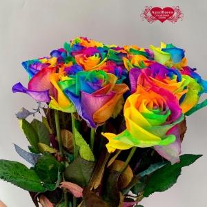 Купить радужную розу в Комсомольске-на-Амуре