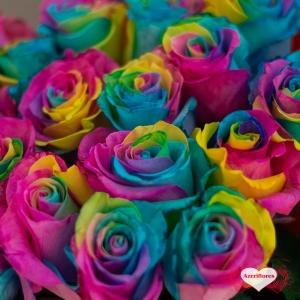 Купить охапку из 25 радужных роз в Комсомольске-на-Амуре