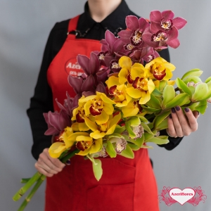 Купить ветку орхидеи поштучно в Комсомольске-на-Амуре