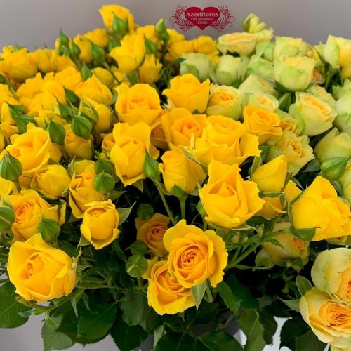 Купить желтую кустовую розу в Комсомольске-на-Амуре