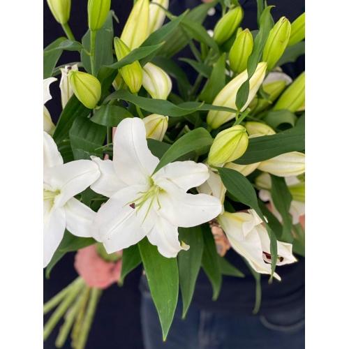 Купить лилию поштучно с доставкой в [r-seoseo-city-name-pp]