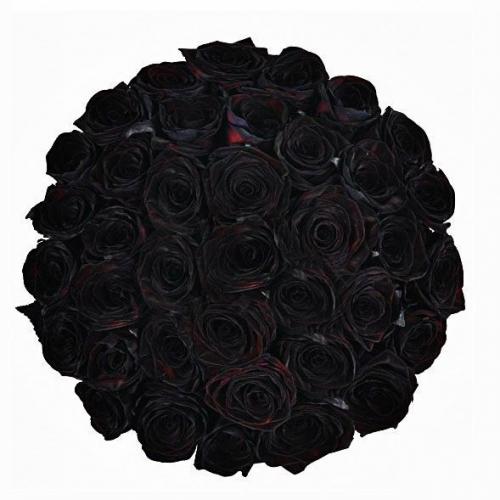 Купить охапку из 51 чёрных роз в Комсомольске-на-Амуре